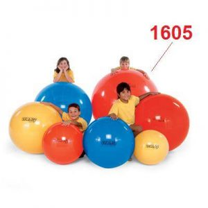 Топка за баланс GYMNİC CLASİC 95.98-1605